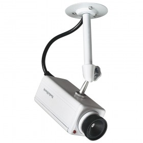 Radioshack 4902569 Indoor/Outdoor Simulated Security Camera
